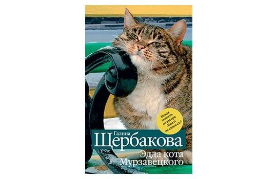 cat poop missing litter box