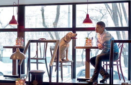 мужское термобелье кафе с собаками москва 24 стоит помнить