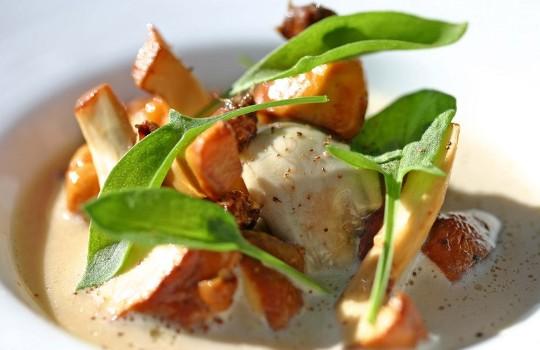 Блюда из лисичек рецепты с фото