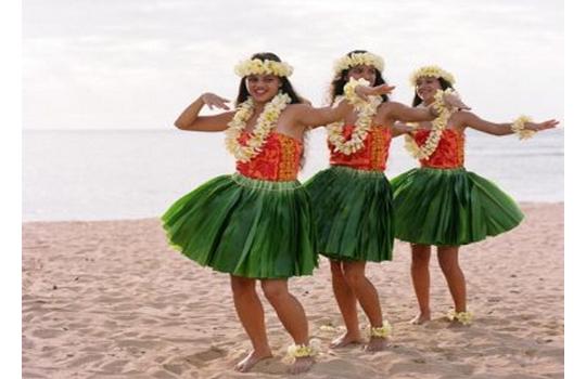 пляжная гавайская вечеринка одежда острой боли
