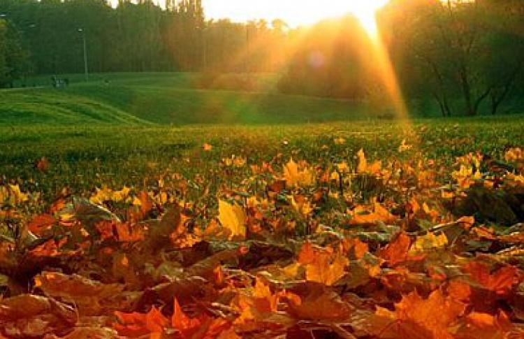 21вещь, которую надо сделать осенью