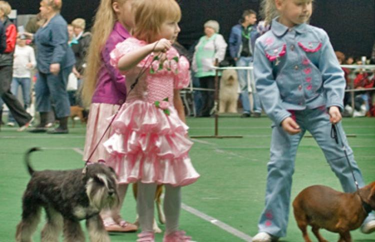 """Шоу собак и Международная выставка собак всех пород """"Гран-При """"Весенний Петербург-2010"""""""