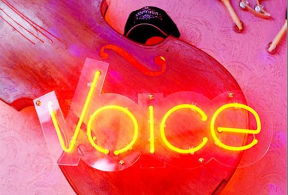 Voice - Фото №1
