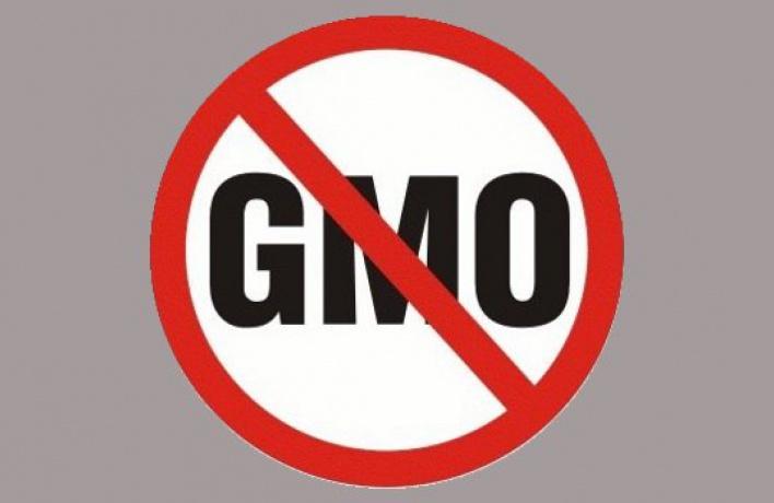 ГМО станет видно всем