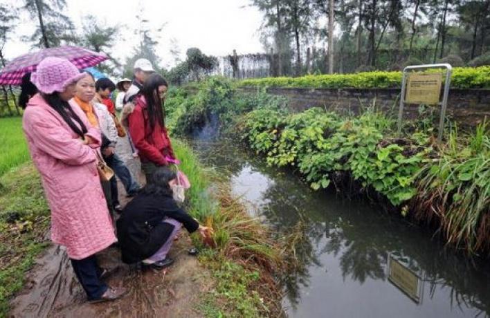Вьетнамский квартал потеснит Лосиный остров