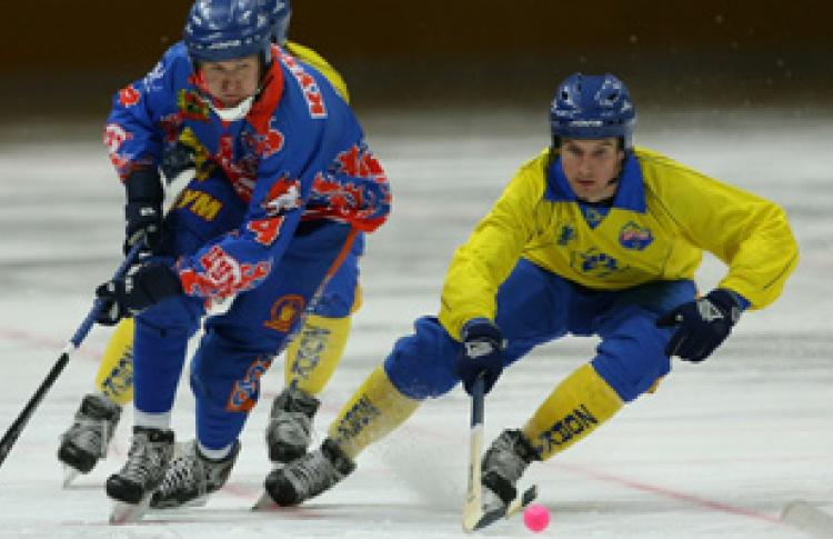 Чемпионат России по хоккею с мячом 2006-07