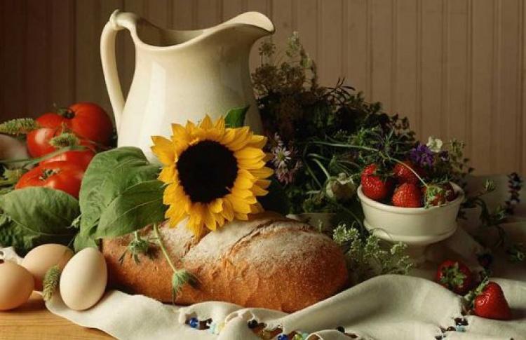 Лучшие сайты создоровой едой