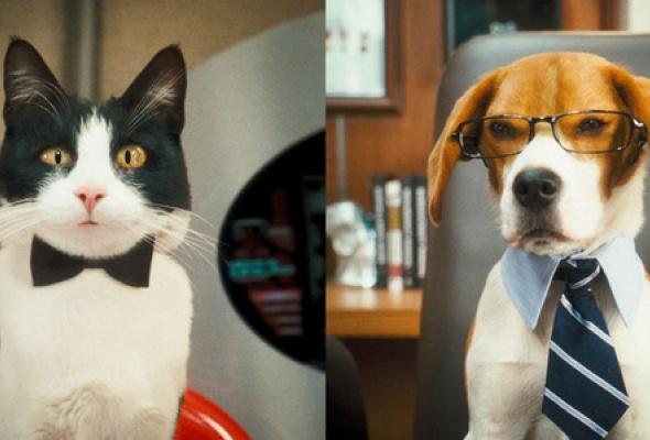 Кошки против собак: Месть Китти Галор - Фото №3