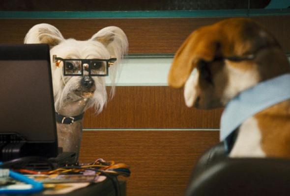 Кошки против собак: Месть Китти Галор - Фото №5