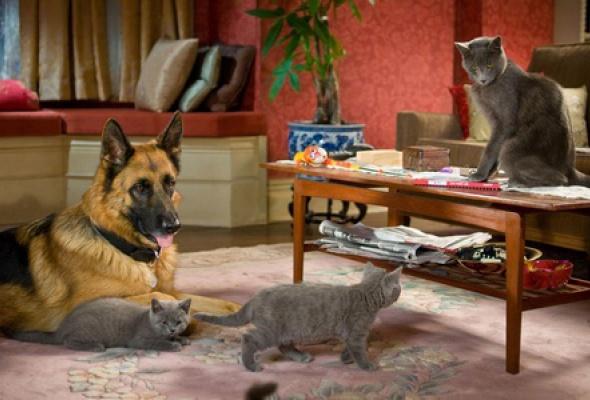 Кошки против собак: Месть Китти Галор - Фото №12