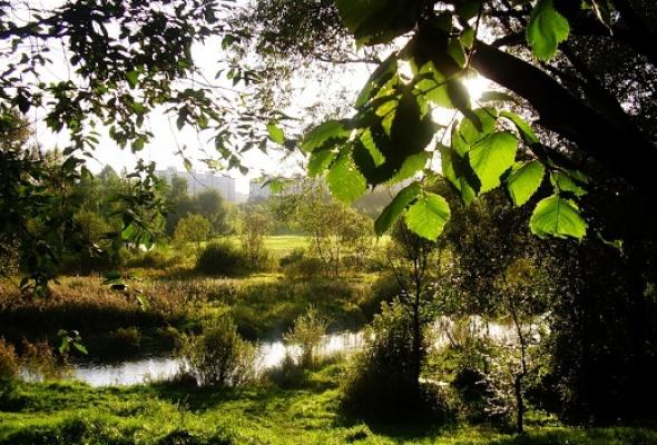 Бабушкинский парк - Фото №0