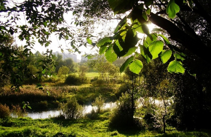 Бабушкинский парк