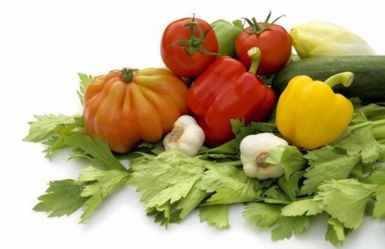 Вегетарианский фестиваль