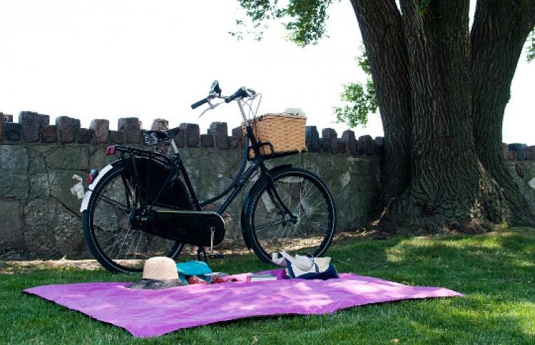 Пикник для романтиков иеще 6идей, как отдохнуть загородом