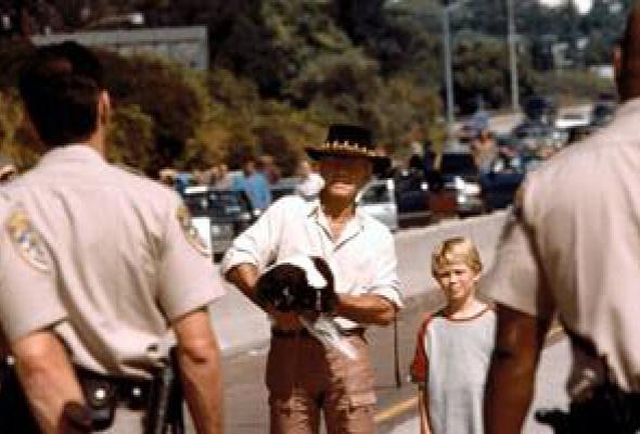 Крокодил Данди в Лос-Анджелесе - Фото №0