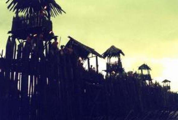 Воины джунглей - Фото №5