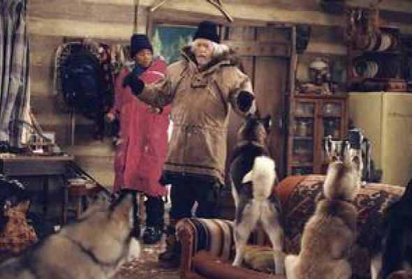 Снежные псы - Фото №6