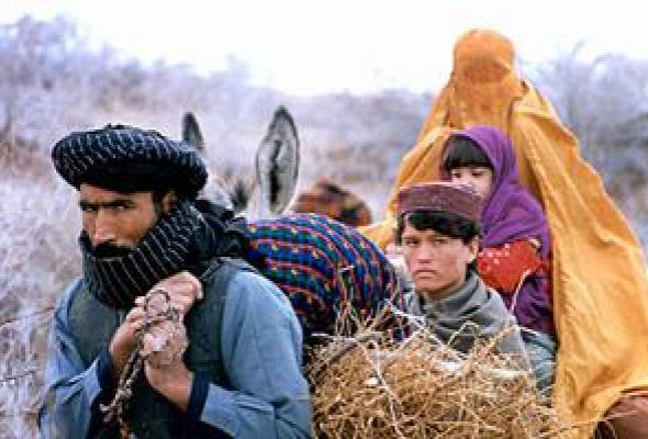 Кандагар - Фото №9