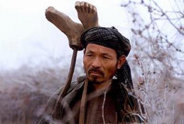 Кандагар - Фото №6