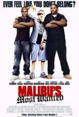 Разыскивается в Малибу