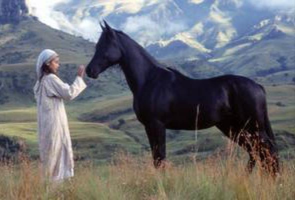 Приключения Черного скакуна - Фото №0