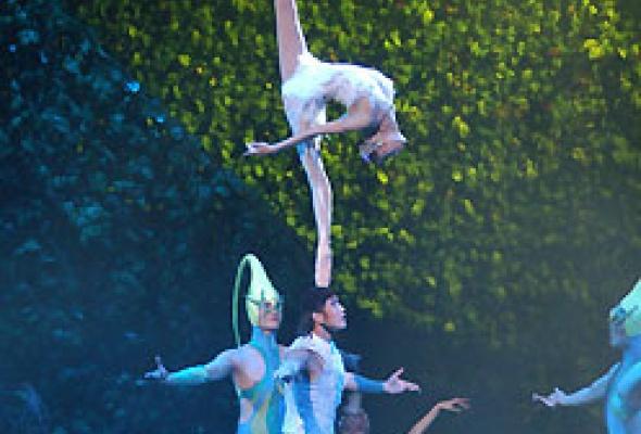 """Китайский акробатический балет """"Лебединое озеро"""" - Фото №3"""