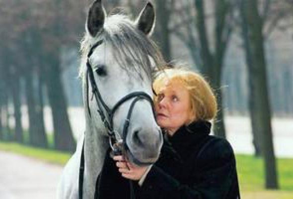 Год лошади - созвездие Скорпиона - Фото №2