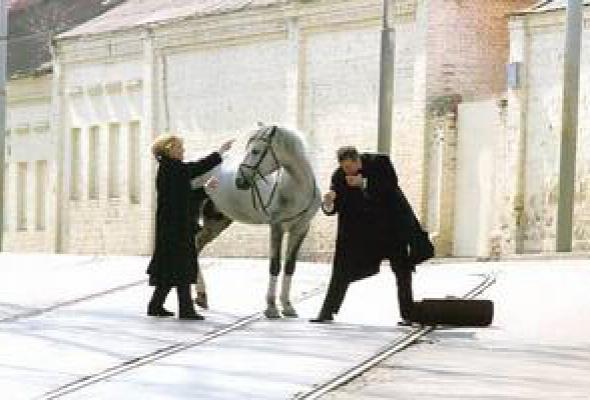 Год лошади - созвездие Скорпиона - Фото №9