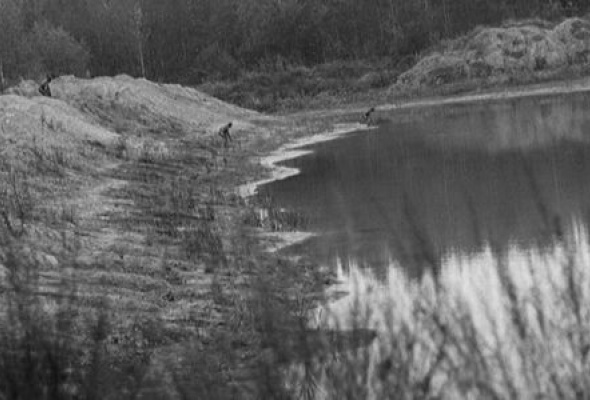 Прямохождение - Фото №23