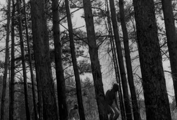 Прямохождение - Фото №51