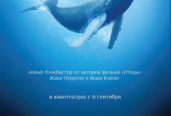 Океаны - Фото №6
