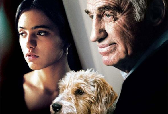 Человек и его собака - Фото №7