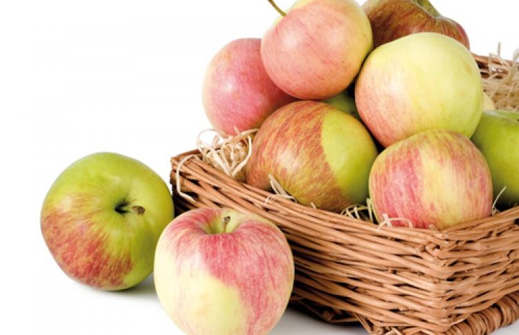 Яблочный спас вресторане «НаЗдоровье!»