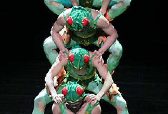 """Китайский акробатический балет """"Лебединое озеро"""" - Фото №8"""