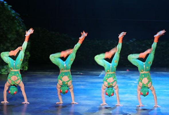 """Китайский акробатический балет """"Лебединое озеро"""" - Фото №9"""
