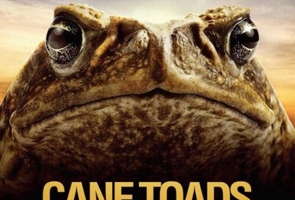 Тростниковые жабы: Оккупация 3D - Фото №6