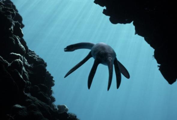 Морские динозавры 3D: Путешествие в доисторический мир - Фото №4