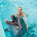 Как дельфины спасают отосенней хандры