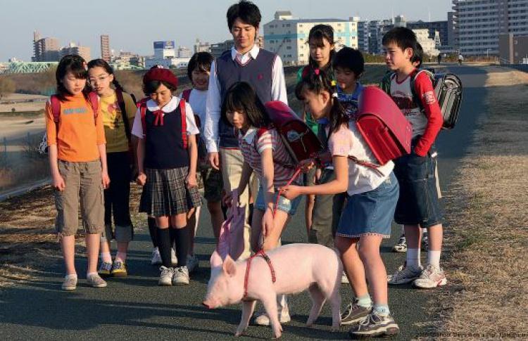 44-йфестиваль японского кино