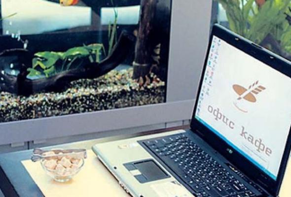 Офис-кафе - Фото №0