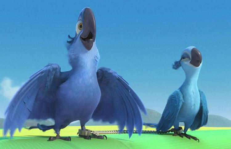 Появился трейлер нового мультфильма отсоздателей «Ледникового периода»