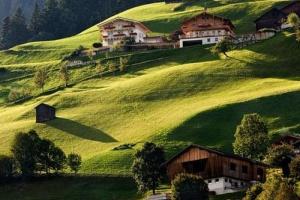 Фестиваль альпийской кулинарии