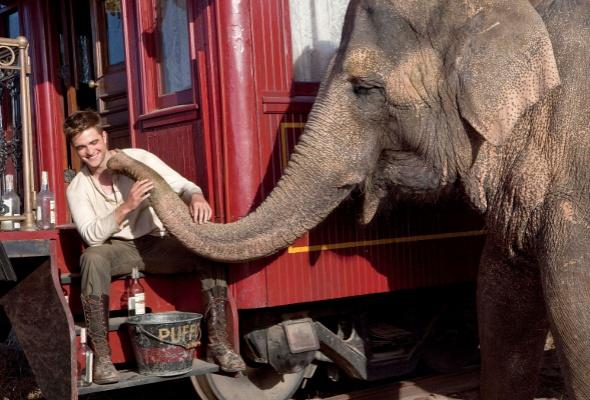 Воды слонам - Фото №2