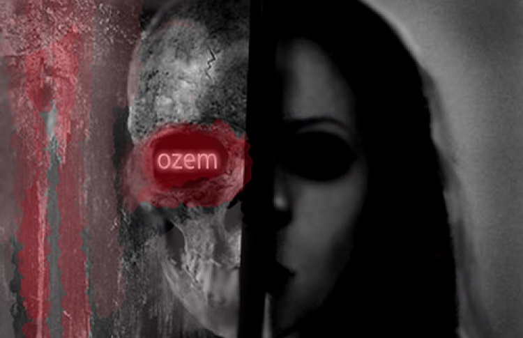 Ozem. Paint It