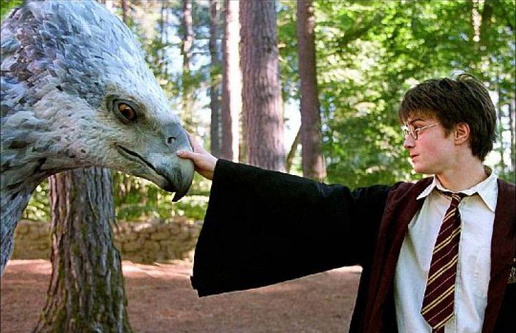 «Гарри Поттер иузник Азкабана»— лучший детский фильм десятилетия