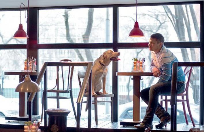 12ресторанов для собак иихсобачников