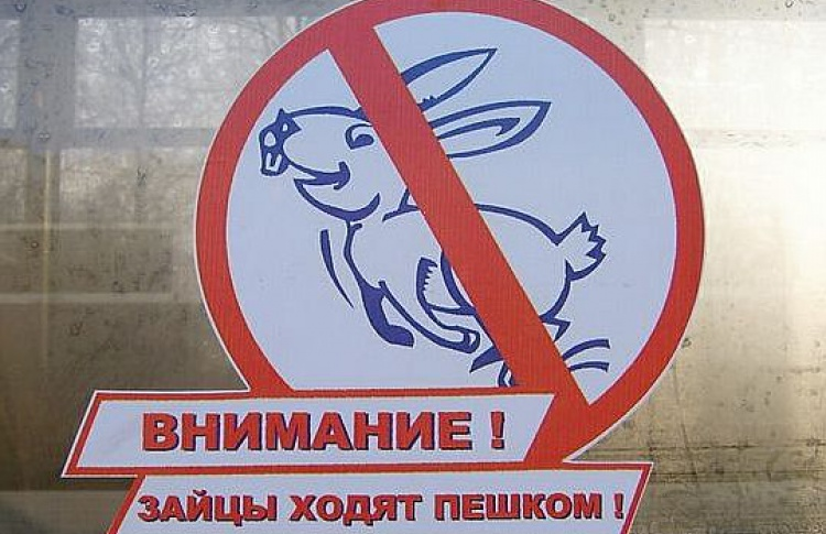 Насайте департамента транспорта появится список «зайцев»