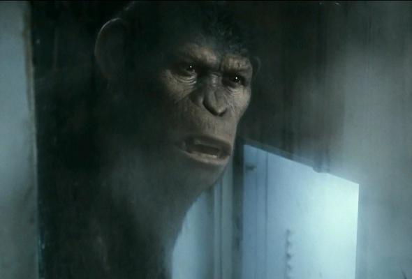 Восстание планеты обезьян - Фото №3