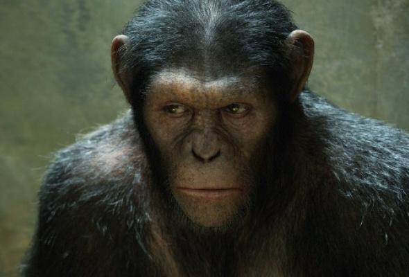 Восстание планеты обезьян - Фото №4