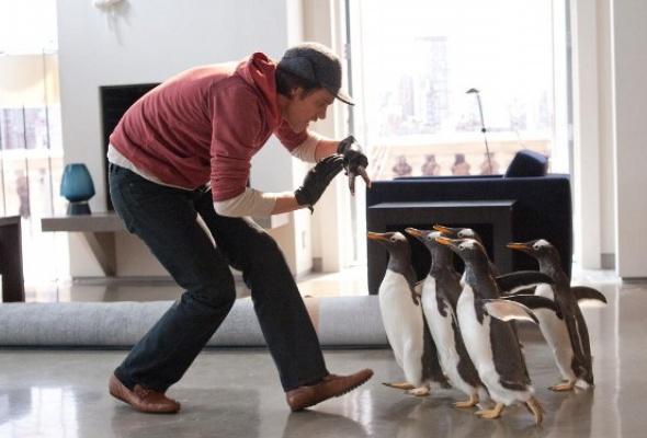 Пингвины мистера Поппера - Фото №5